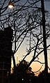 (1)Barker Street sunset-1.jpg