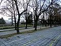 Град Скопје, Р. Македонија нас. Центар опш. Центар - panoramio (13).jpg