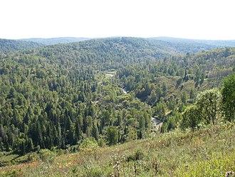 Novokuznetsky District - The Bolshoy Tesh River valley in Novokuznetsky District