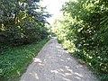 Дорога в центр - panoramio (6).jpg