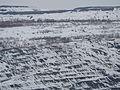 Коркинский разрез - panoramio (9).jpg