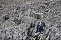 Найди маяк. Остров Symi. Greece. Июнь 2014 - panoramio.jpg