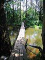 Раскачивающийся мост - panoramio.jpg