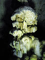 СП264 Пећина Церемошња.JPG