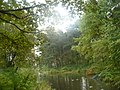 Система прудов и парк Александрино.jpg