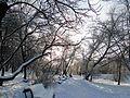 Скомейки - panoramio.jpg