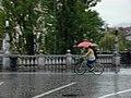 Словенка на велосипеде (40090048855).jpg