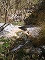 چشمه دره گاهان - panoramio (1).jpg