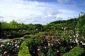 えこりん村 銀河庭園(Ekorin village, Galaxy Garden) - panoramio (11).jpg