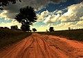 回家的路【路人】 - panoramio.jpg
