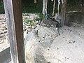 土砂に埋まった大滝神社4.jpg