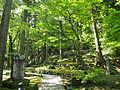 新緑溢れる永平寺近辺の風景.JPG