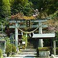 明日香村飛鳥 飛鳥坐神社の鳥居 2012.4.12 - panoramio.jpg