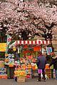 春の屋台 2009 (3408323819).jpg