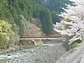浦川の桜.JPG