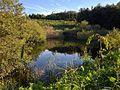 謎の湖 - panoramio.jpg