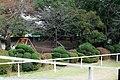 馬事公苑 - panoramio (28).jpg