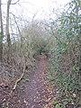 -2018-12-14 Southrepps circular Footpath, Lower Southrepps (3).JPG
