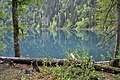 - panoramio (4685).jpg
