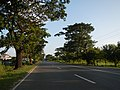 01361jfWest Halls Highways Fields Cupang Balanga City Bataanfvf 22.JPG