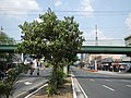 03470jfBuildings West North Avenue Roads Edsa Barangays Quezon Cityfvf 01.JPG