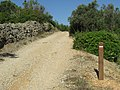08-06-2017 Way-marker post, Via Algarviana long distance hiking trail, Alfarrobeiras (4).JPG