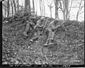 111-SC-197682 - SC 197682 - An American infantryman keeps firing while two of his comrades insert fresh ammunition in their rifles, as steady fire from this sheltered infantry covers advance near Rosteig, France. December 5, 1944.jpg