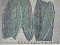 1170 Andergasse 10-12 - Ernest Bevin-Hof Stg 14 - Hauszeichen Kastanienblätter von Elisabeth Eisler 1958 IMG 4776.jpg