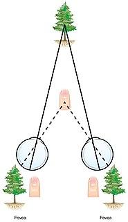 Cyclopean image