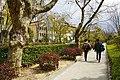 170311 Kwansei Gakuin University Nishinomiya Hyogo pref Japan13s3.jpg