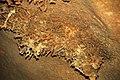 190 Helictites 6 (8317601790).jpg