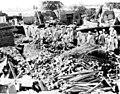 1955 East Punjab Flood 49570.jpg