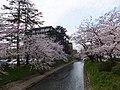 1 Shinsōgawa, Toyama-shi, Toyama-ken 930-0006, Japan - panoramio (11).jpg