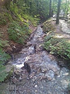 Medveščak (stream)