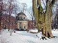20060308475DR Pillnitz (Dresden) Schloßpark Englischer Pavillon.jpg