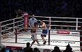 2011 boxing event in Stožice Arena-Dejan zavec IIV.jpg