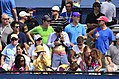 2013 US Open (Tennis) (9677253174).jpg