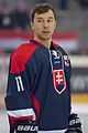 20150207 1756 Ice Hockey AUT SVK 9462.jpg