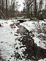 2016-02-15 08 38 20 View west down a snowy Cain Branch of Cub Run in the Armfield Farm section of Chantilly, Fairfax County, Virginia.jpg