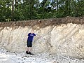 2018 chernozem soil on limestone11 28 37 547000.jpeg