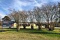 2021-03-12 Milstead, AL - Auburn University E.V. Smith Research Center.jpg
