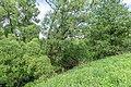 2 Остепненные склоны и балочные леса по правому берегу долины р. Осетрик.jpg