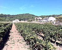 34210 Félines-Minervois, France - panoramio.jpg