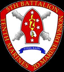 5-10 battalion insignia