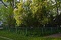 61-101-5002 Ternopil Czajkowski DSC 9960.jpg