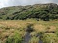 817 Killarney National Park.jpg