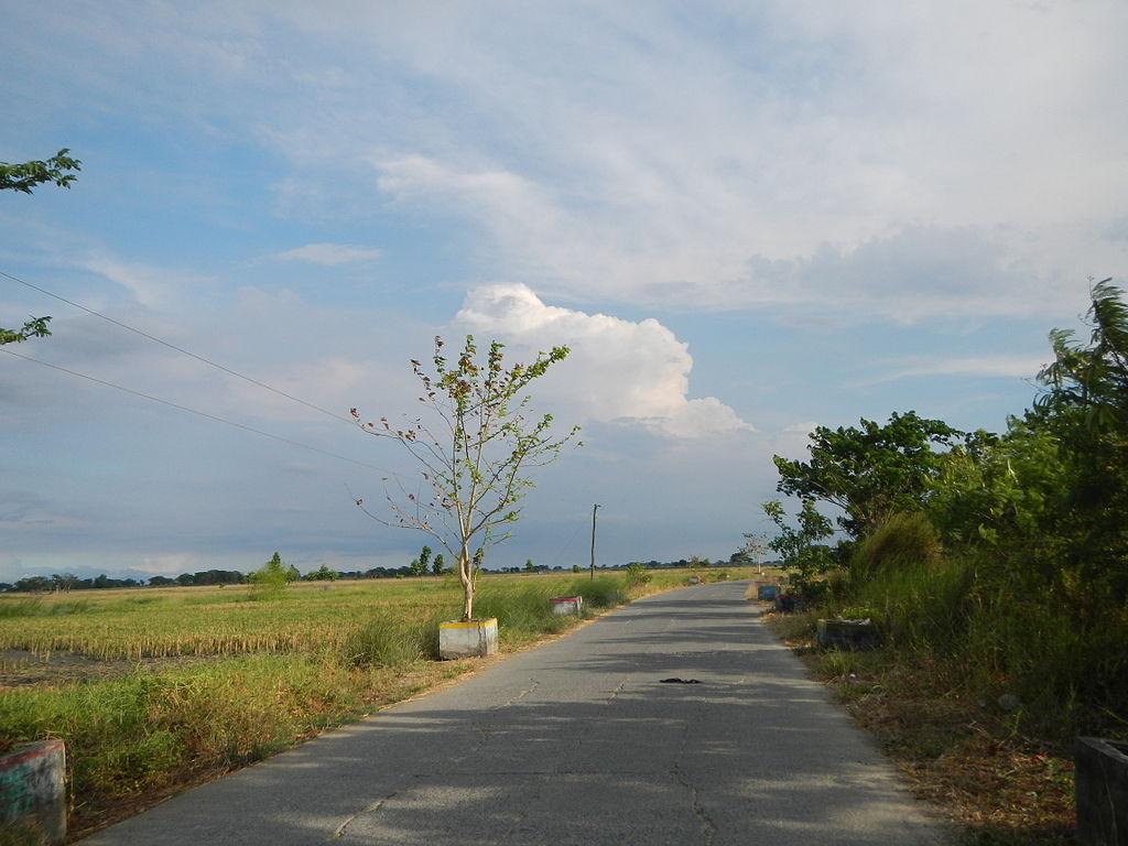 File 9823jfpanabingan cama juan barangays san antonio for Cama wikipedia
