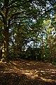 A Lexden Reserve - geograph.org.uk - 1060666.jpg