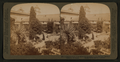 A Pleasant retreat from the world, Gardens of the Old Santa Barbara Mission, California, from Robert N. Dennis collection of stereoscopic views.png