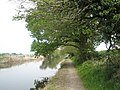 A beautiful day for a walk along Chichester Canal - geograph.org.uk - 789117.jpg